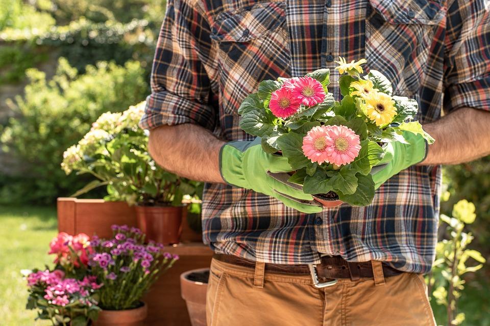 gardener-4186301_960_720